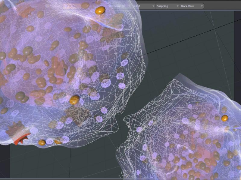 screenshot-metacelsa